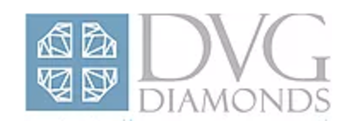 diamond-venture-group-diamonds-miami-fl_logo